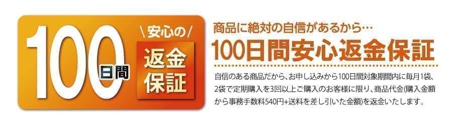 100日間返金保証