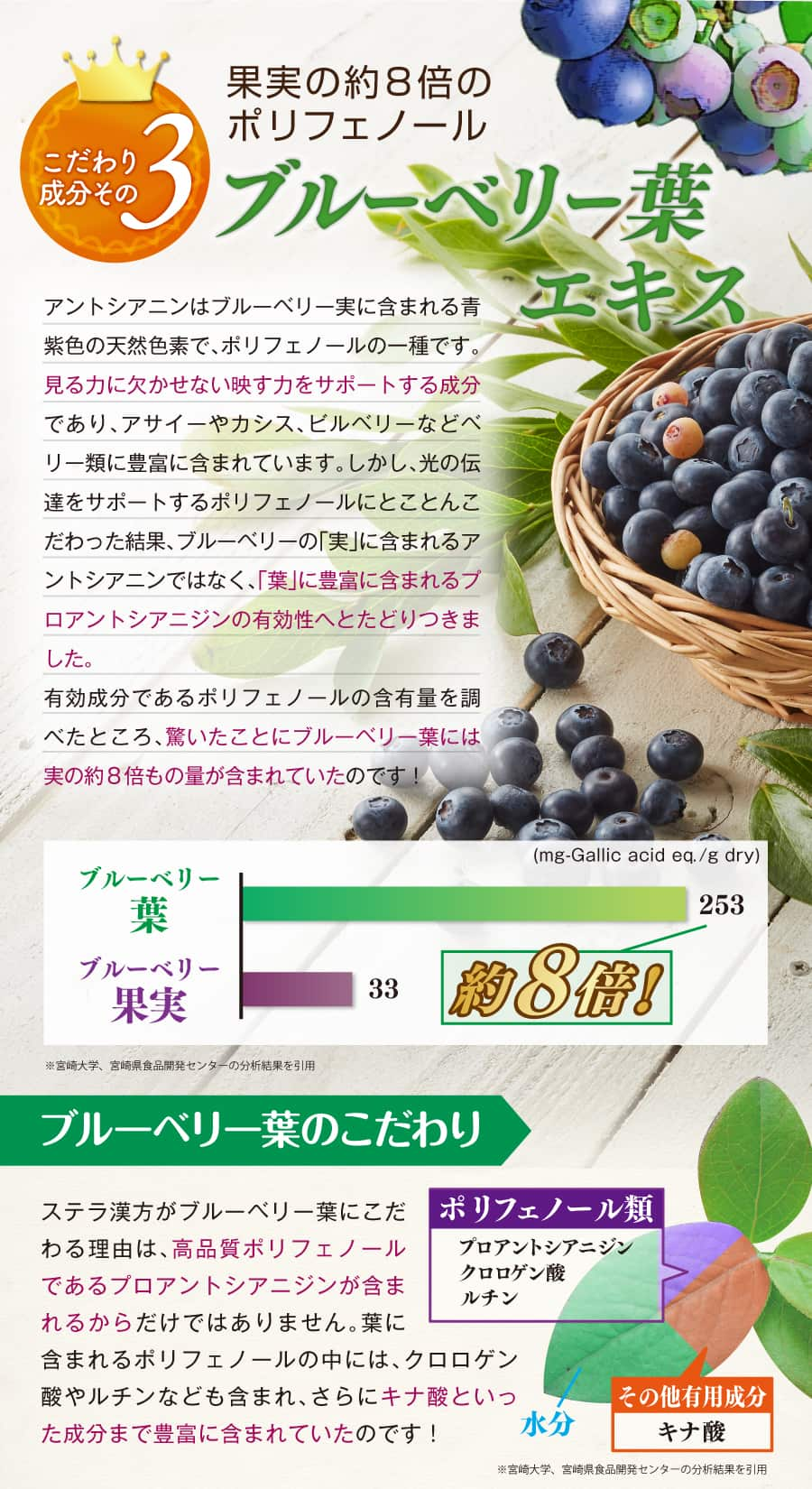 果実の約8倍のポリフェノール量ブルーベリー葉エキス。ブルーベリーの有効成分プロアントシアニジンを配合しているので効果抜群。