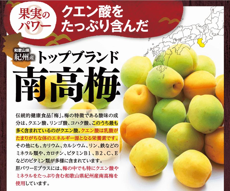 果実のパワークエン酸をたっぷり含んだ南高梅